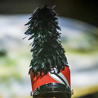Regiment Shako-No Plume