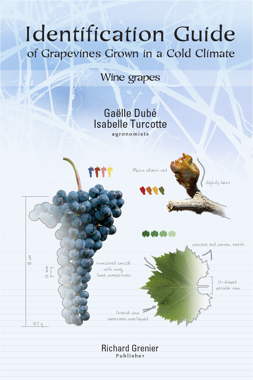 Identification Guide of Grapevines Grown in a Cold Climate (English version)