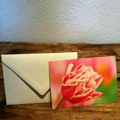 Blütenkarte Tulpe