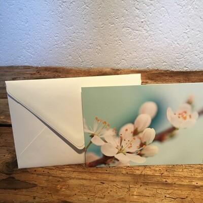 Blütenkarte Kirschblüte