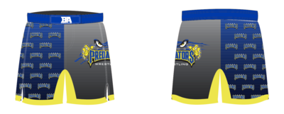 FCWC Predator Fight Shorts