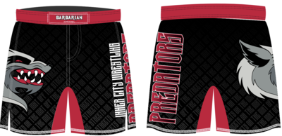 ICW NEW Shorts