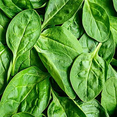 Spinach - 8oz