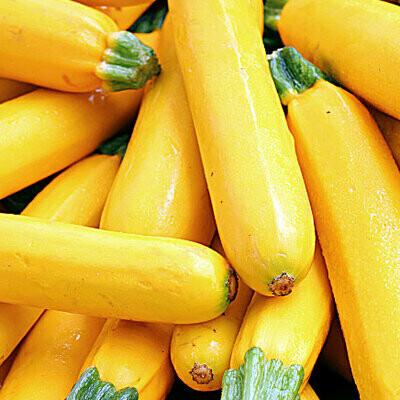Yellow Squash   1LB