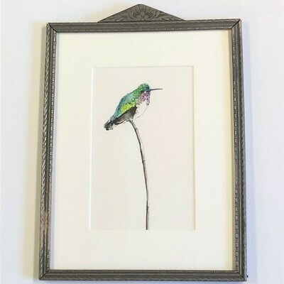 Cline 'Hummingbird' (silver) Ink+Watercolor