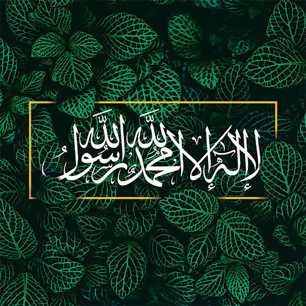 SV005 SHAHADAH GREEN NATURE