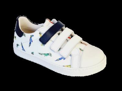Zecchino d'Oro Sneaker M13-7373
