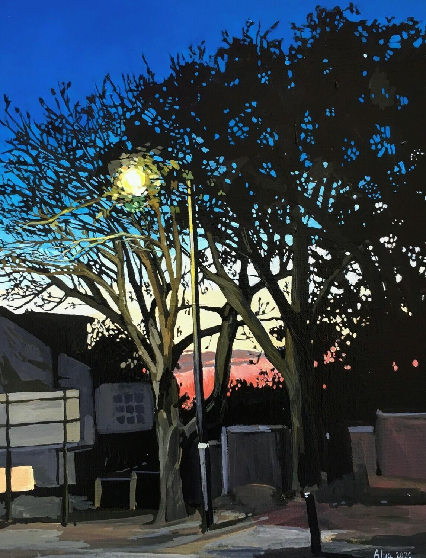 Sunset on Prospect Street, Caversham