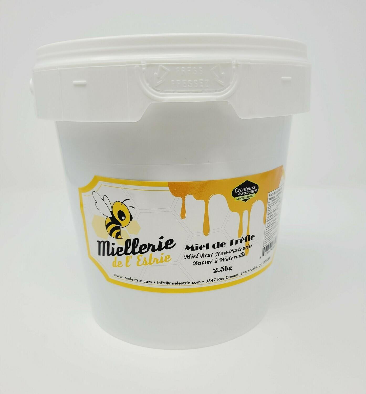 Clover Honey 2.5kg