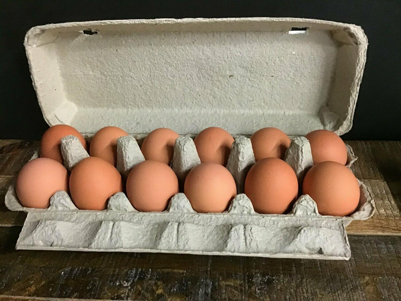 Dozen Free Range Brown Eggs