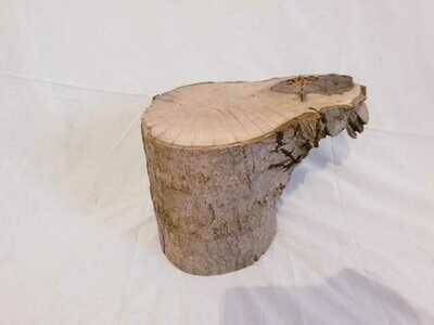 Masuta de cafea rustica stil trunchi de copac