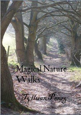 Magical Nature Walks  by Tylluan Penry