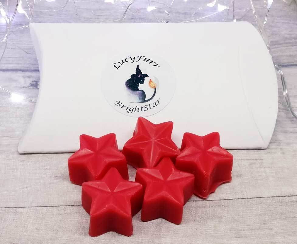 Cinnamon Soy Candle Melts