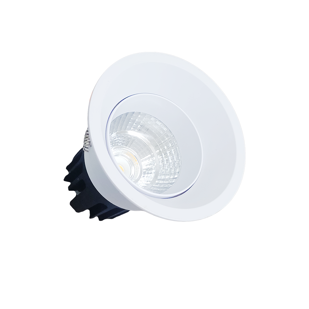 Light concepts COB deep downlight LED light