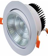 LED COB Spotlight