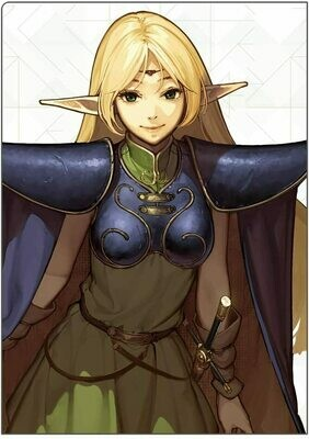 """""""Record of Lodoss War"""" Double-page Clear File """"Deedlit"""""""