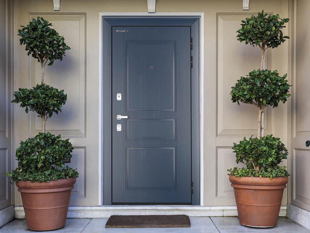 Двери DoorHan квартирные