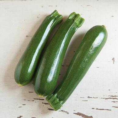 Zucchini-Dunja