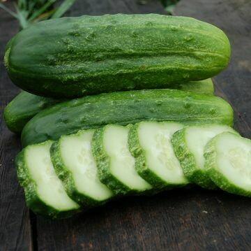 Cucumber- National Pickling