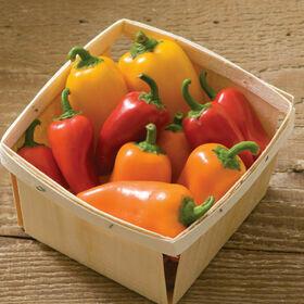 Pepper- Lunchbox Mix