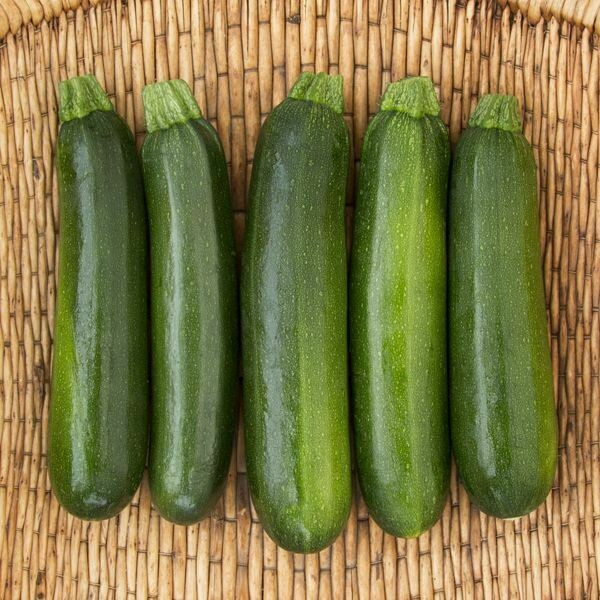 Zucchini- Green Machine F1- Due to Seed Supply Issue, Replacing it with Dunja F1