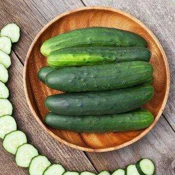 Cucumber- Marketmore 76