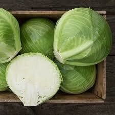 Cabbage- Reaction F1