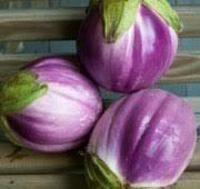 Eggplant- Rosa Bianca