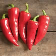 Pepper- Flaming Flare F1