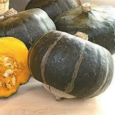 Winter Squash- Bon Bon F1 Buttercup