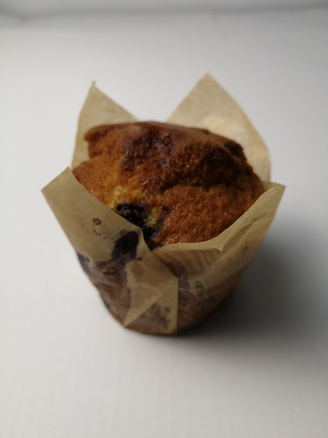 Blueberry Muffin (each)