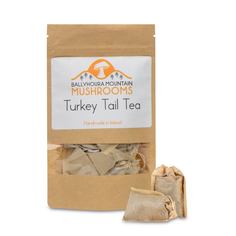 Turkey Tail Tea