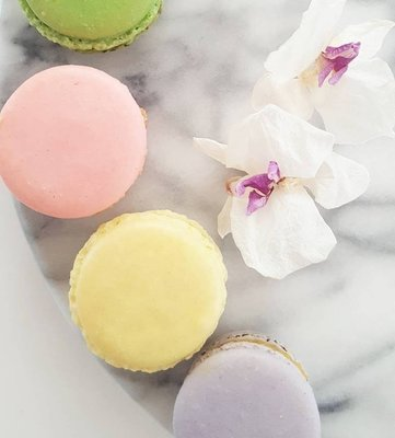 1 Macaron In A Clear Bag