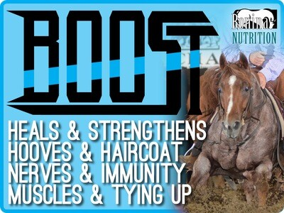BOOST - a Concentrated & Complete Feed with Salt & Oxy-Equine Enhanced Vitamin-Mineral Supplement - 40lb Bag - 10 Doses