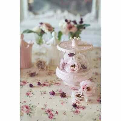 Alzata con Coperchio in vetro Bianca Blanc Mariclò Collezione Le Petit Gourmand