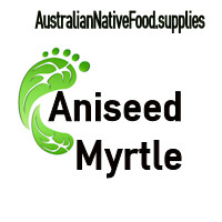 Aniseed Myrtle Flakes 1kg