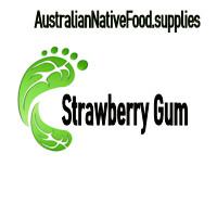 Strawberry Gum 1kg