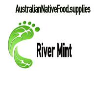 River Mint 1kg