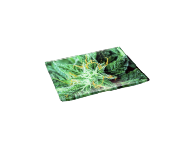 V-Syndicate Rolling Trays
