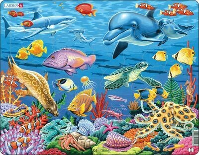 CORAL REEF 35 PIECE CHILDREN'S JIGSAW PUZZLE