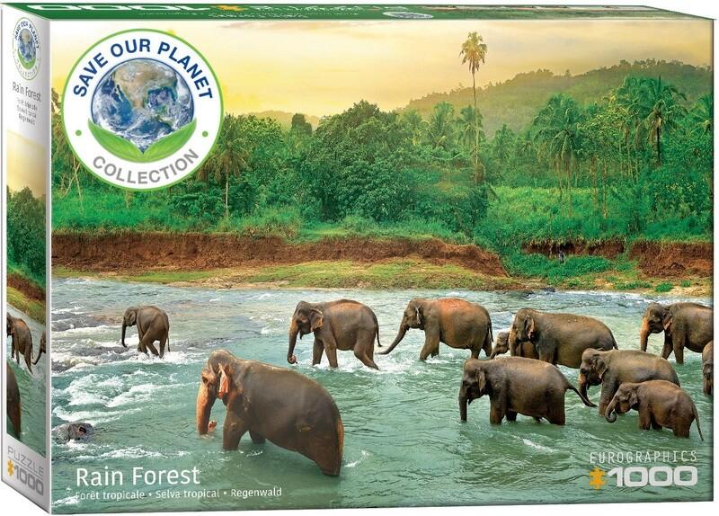 Rain Forest 1000 Pc