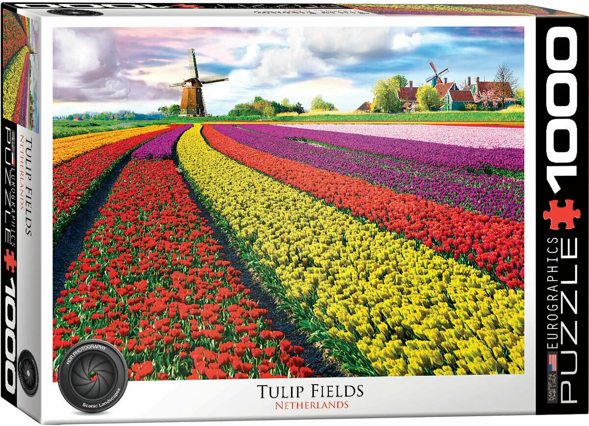 Tulip Fields 1000 Pc