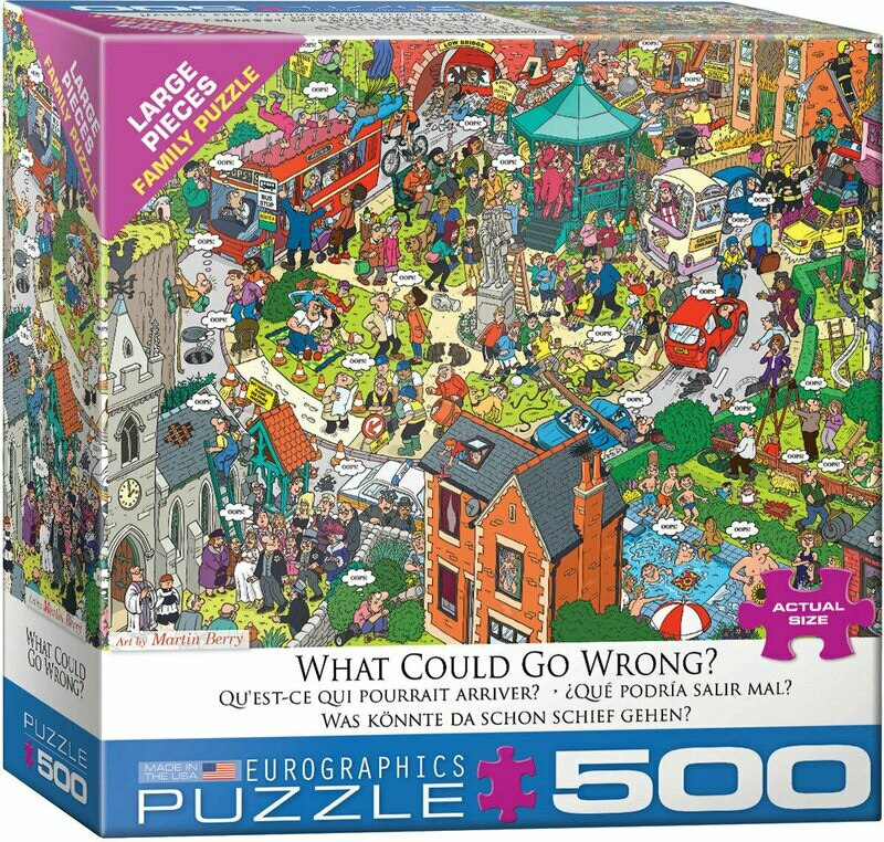 What Could Go Wrong  500 Pc