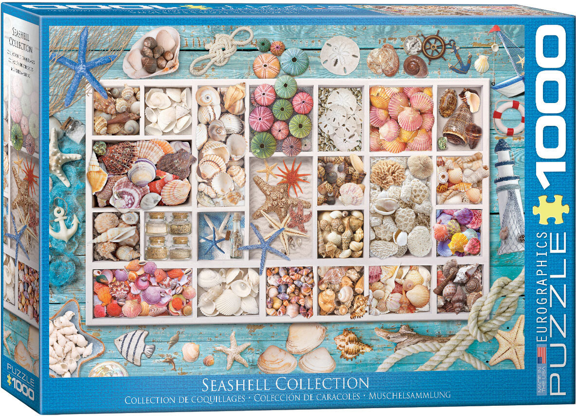 Seashell Collection 1000 Pc