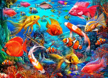 Tropical Fish 1000 Pc