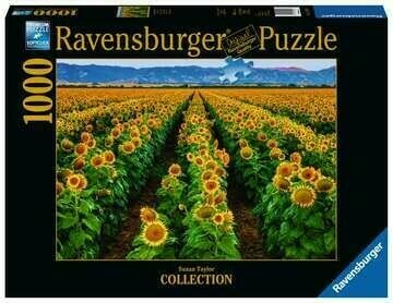 Fields Of Gold 1000 Pc