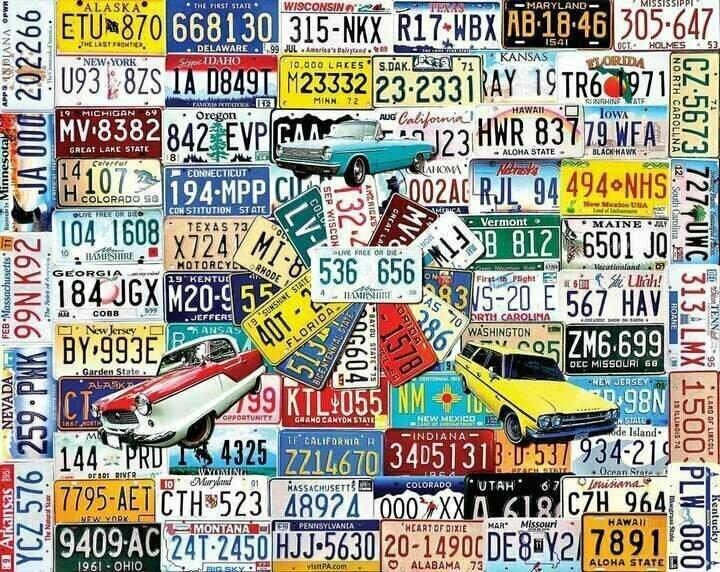 License Plates 1000 Pc