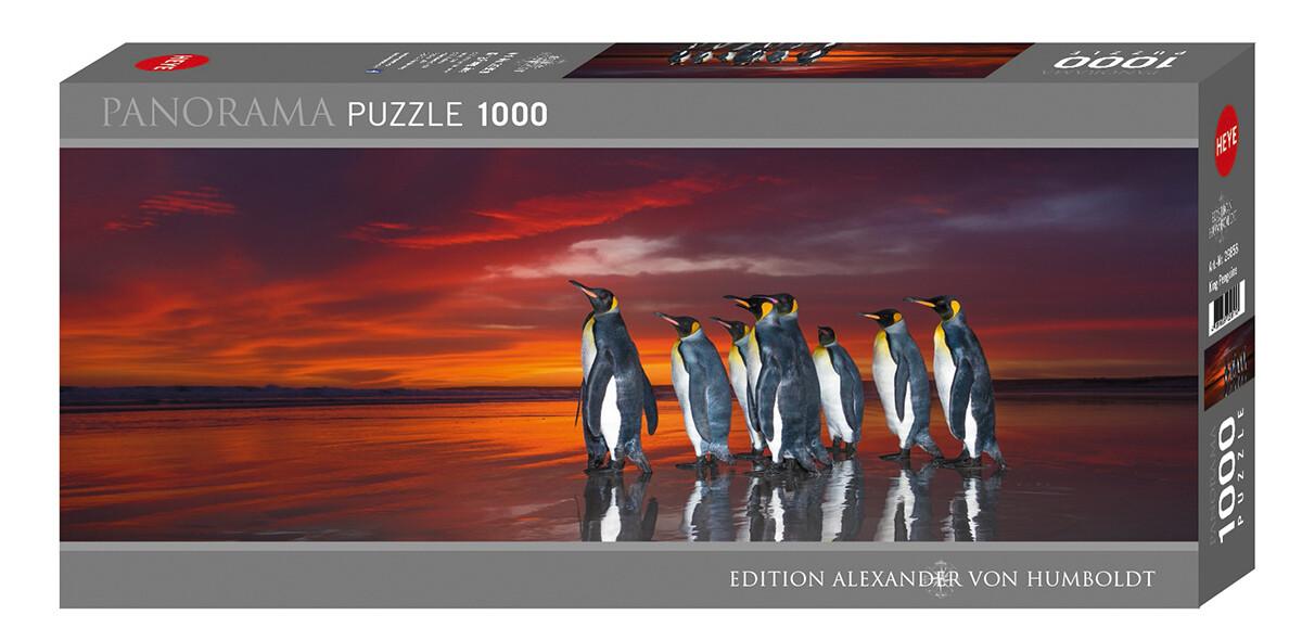 King Penguins 1000 Pc Pano