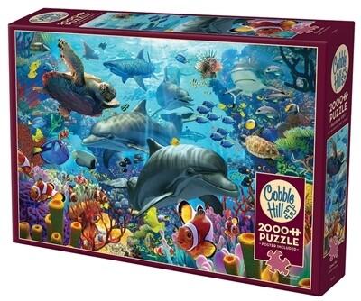 Coral Sea 2000 Pc