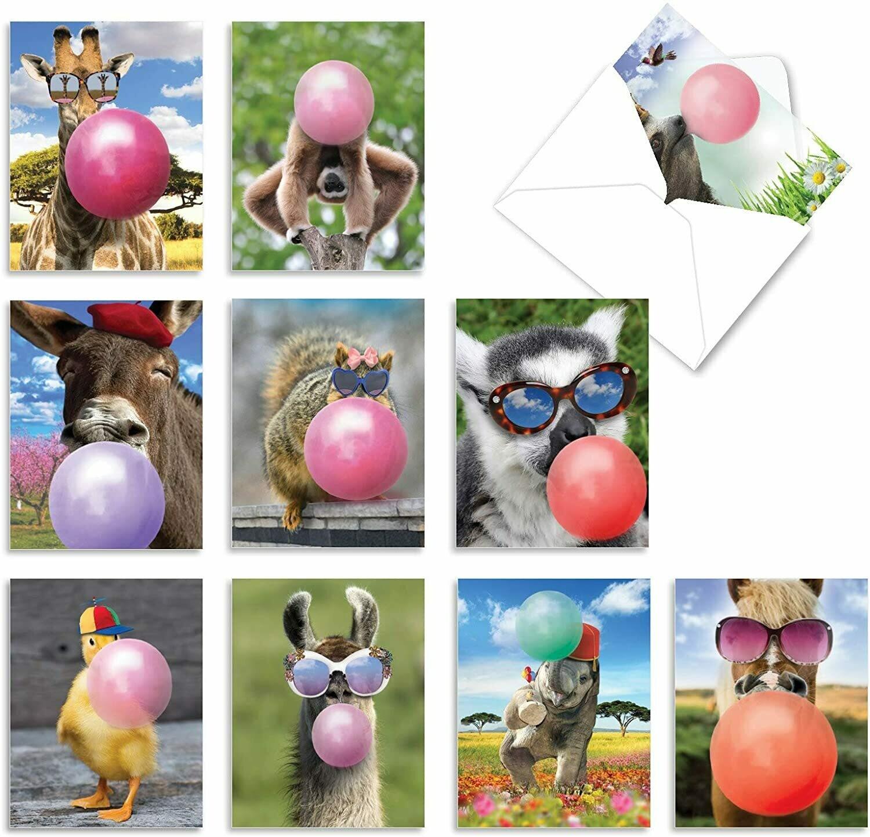 Animal Balloons Greeting Card 12 Pc